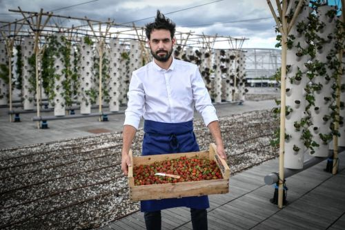 World's largest urban farm opens in Paris