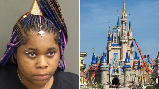 Mother 'hid her loaded gun behind plant at Disney World - then blamed son, 6'