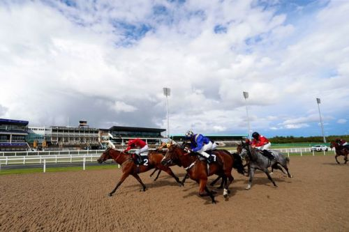 Newsboy's horse racing tips for Monday with Nap fancied to win again at Newcastle