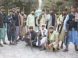 Throwing stones at lions - a day at the zoo, Taliban-style: Jihadis taunt the pride of Kabul