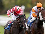 Robin Goodfellow's Racing Tips: Best bets for Wednesday, October 21