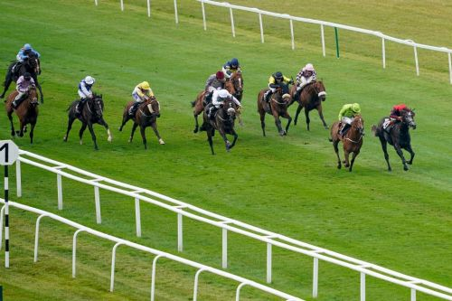 Newbury Races: Tips, racecards and betting preview for Hackwood Stakes day live on ITV