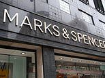 Marks & Spencer drafts in McDonald's chief as human resources director