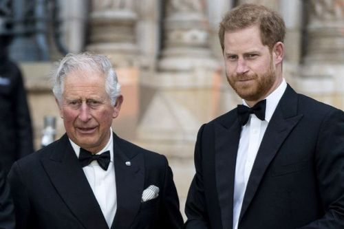 Prince Harry 'lost the plot by blaming Queen and Philip for his genetic pain'