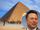 Egypt invites Elon Musk to see Great Pyramids after he tweeted they were 'built by aliens obviously'