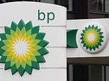 After the BP dividend cut, where's left for the income-hunter?