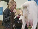 Amanda Holden tries to milk a goat in disastrous Heart Radio challenge