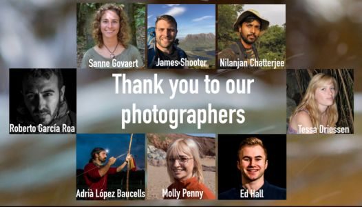 Capturing Ecology: Behind the Lens - Top tips for photographers