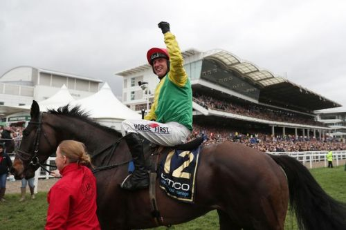 Gold Cup winner Sizing John ruled out for the season by Jessica Harrington