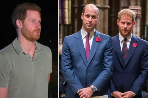Prince Harry refuses to deny rift with brother Prince William: 'We are on different paths'