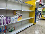 Tesco sets three-item limit on flour, dried pasta, toilet roll and wipes as panic buying returns