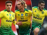 Norwich players 'will see wages cut by 50% if they are relegated from the Premier League'