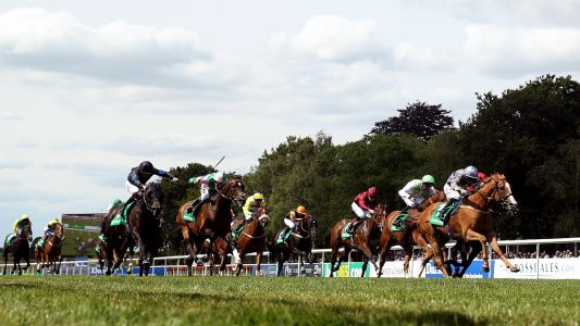 Daily Racing Tips: Timeform's three best bets at Newmarket on Friday