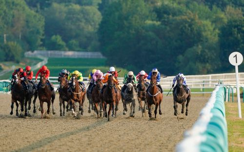 Marlborough racing tips and best bets for Thursday, August 13