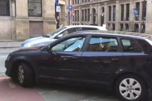 Audi driver throws TANTRUM over ticket for parking on across cycling lane