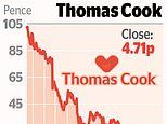 More than 20pc of Thomas Cook is owned by small investors