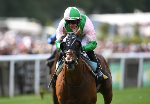 Top miler Duke Of Hazzard 'thriving' as Paul Cole readies him for next month's Queen Anne at Royal Ascot