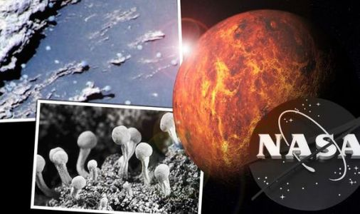 Life on Mars?NASA scientists find growing 'FUNGI' in Mars Curiosity Rover photos