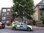 Murder probe is launched after woman, 61, is found dead with head injuries in her south London home