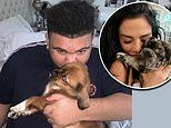 Katie Price reveals she has a new puppy named Sid