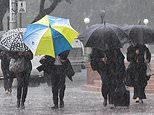 Torrential downpours cause travel chaos for Sydneysiders as 42mm of rain falls in just five hours