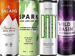 Say cheers to the boozy water! Femail drink expert HELEN McGINN reveals the healthy fizzy drink