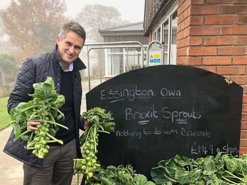 Tory Gavin Williamson's Reelection Bid Lifts Off With Cornish Pasties and 'Brexit Sprouts'