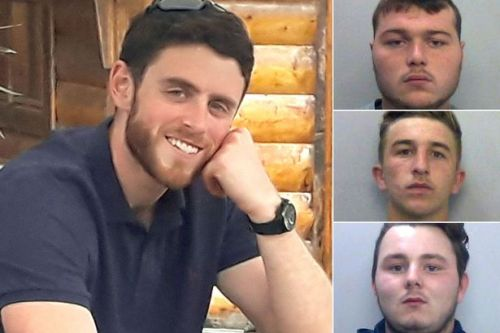 Minister asked to consider 'lenient' jail terms for killers of PC Andrew Harper