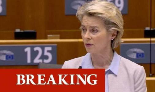 No deal incoming: Gloomy Von der Leyen prepares MEPs for hard Brexit as deadline looms