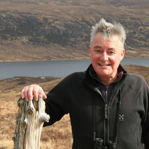 Life finds a way: what does lockdown mean for Scotland's wildlife?