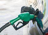 'Greener' fuel causes soaring prices at the pumps, experts warn