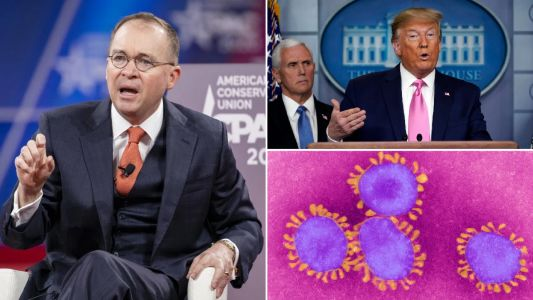 Donald Trump aide says media is covering coronavirus to 'bring down the president'