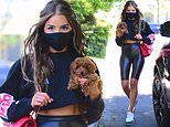 Olivia Culpo showcases her toned legs in skintight cycling shorts as she steps out with new puppy