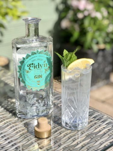 Aldi and Edinburgh's Old Curiosity Distillery team up to launch new Eidyn gin