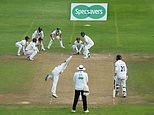 Somerset handed 12-POINT penalty for 'poor' pitch in County Championship decider against Essex