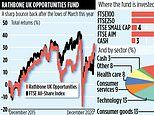 RATHBONE UK OPPORTUNITIES: Small fund but big hopes