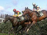 Virtual Grand National 2020 sweepstake kit featuring the 40 runners, riders and odds