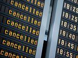 VICTORIA BISCHOFF: Work with the travel firms to stop the tailspin