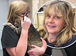 Cat missing for 11 YEARS reunited with family after a local shelter worker scans microchip