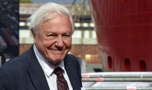Sir David Attenborough: Pandemic could make nations realise climate issue depends on co-operation