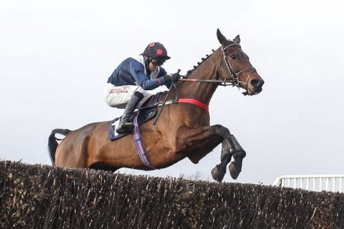 Horse racing tips: Best bets for Tuesday from Hereford, Hexham and Wolverhampton