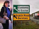 Tech solutions to solve the Irish border 'backstop' problem are possible but not for THREE YEARS