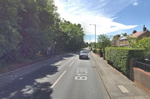 Hunt for thug 'with bad teeth' who held knife to baby's throat and robbed gran