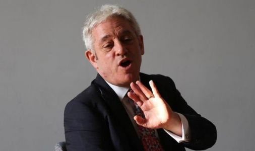 John Bercow mocked over peerage snub by former Irish diplomat - 'Can't have it both ways!'