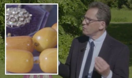 Antiques Roadshow expert speechless as they share unbelievable value of large amber jewels