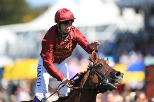 Goodwood races: tips, racecards and previews for Saturday's card on the Sussex Downs as the Celebration Mile takes centre stage