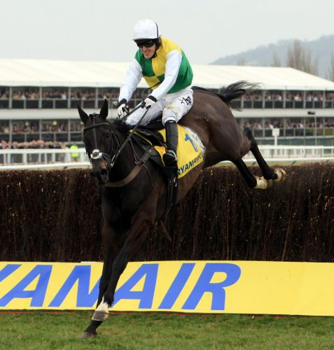 Number 47: The three-time Festival winner who AP McCoy could set his watch by each year