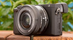 The Best DSLR and Mirrorless Cameras for 2019
