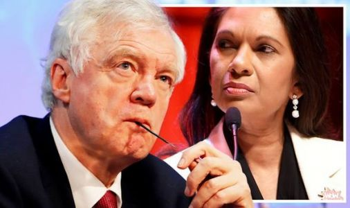 David Davis admits to secretly agreeing with Gina Miller on Brexit while still a minister