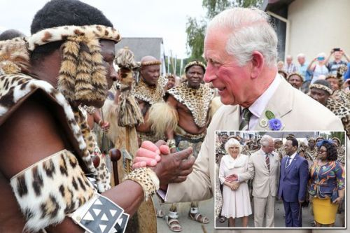 Prince Charles pays heartfelt compliment to Zulu King during poignant meeting